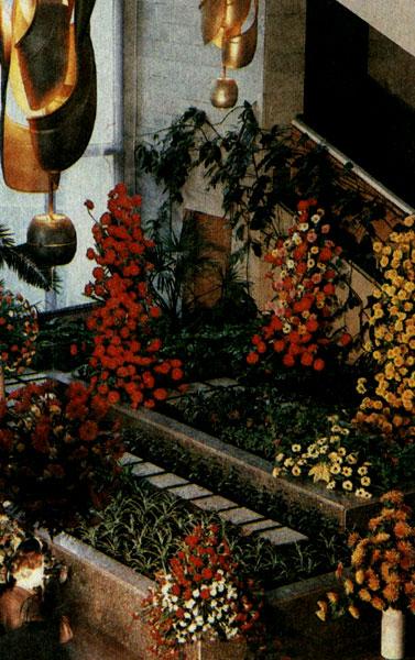 Интерьер ленинградского магазина «Цветы» № 35