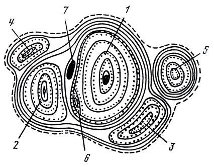 Схема строения «гнезда»